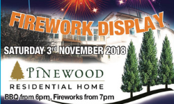 Pinewood firework display 2018