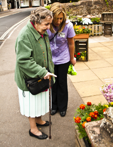 Domiciliary Care Agency, Devon