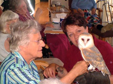 Visiting entertainers and guests such as the local falconry are welcome events.